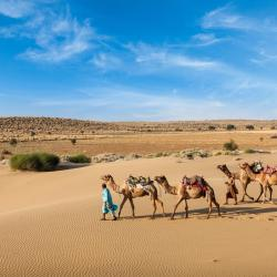 Rajasthan 482 accessible hotels