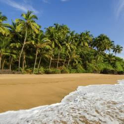 South Goa 122 self catering properties