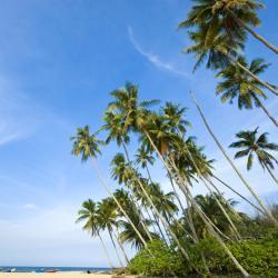 Província de Terengganu 72 pousadas