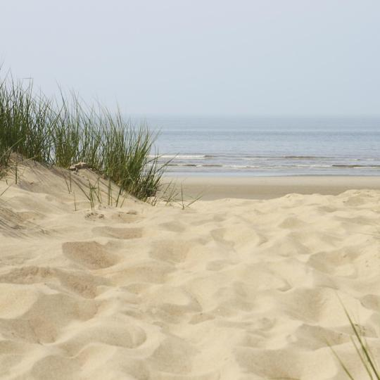 Beach at Bergen aan Zee