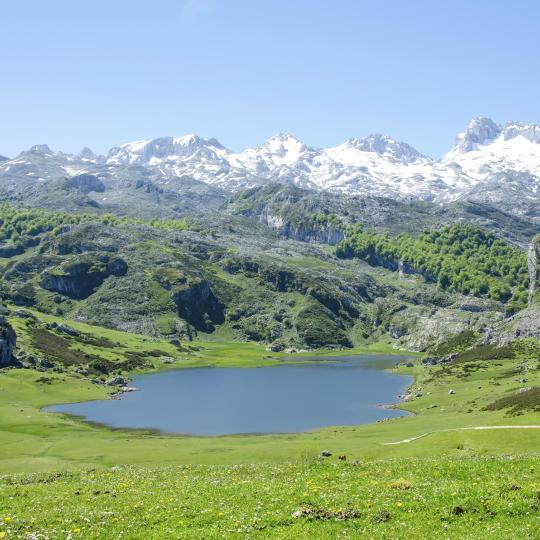 Picos de Europa National Park