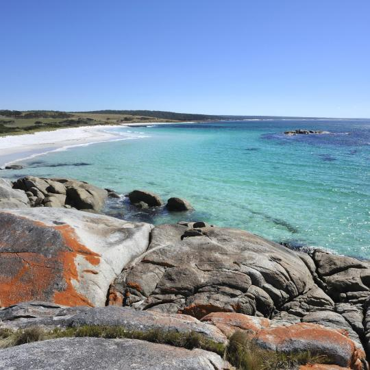 The Bay of Fires