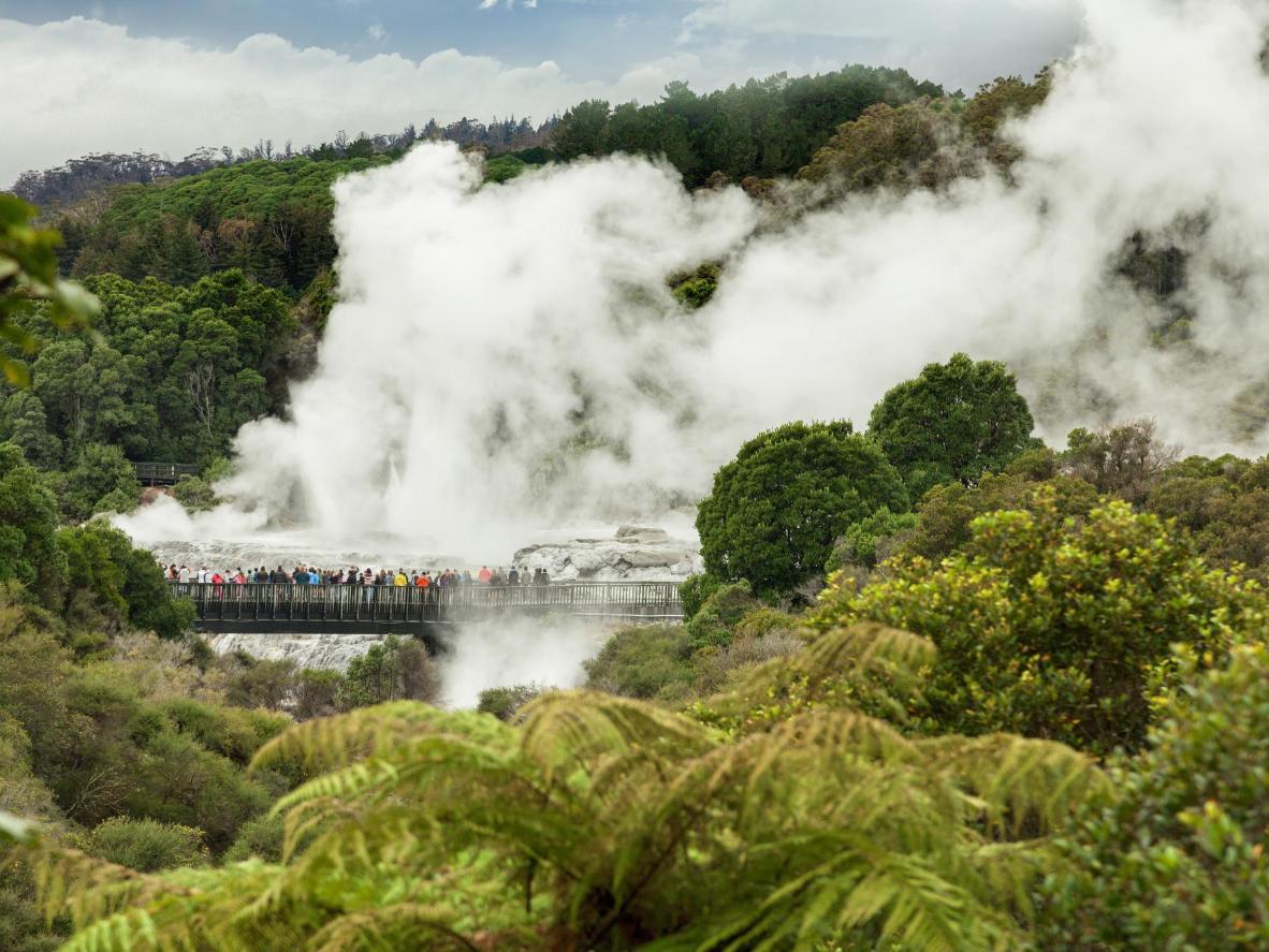Lembah Te Puia's Whakarewarewa di New Zealand