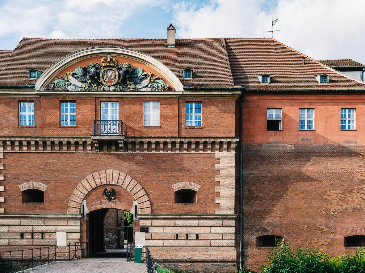 The Spandau Citadel is home to 11,000 bats of different species