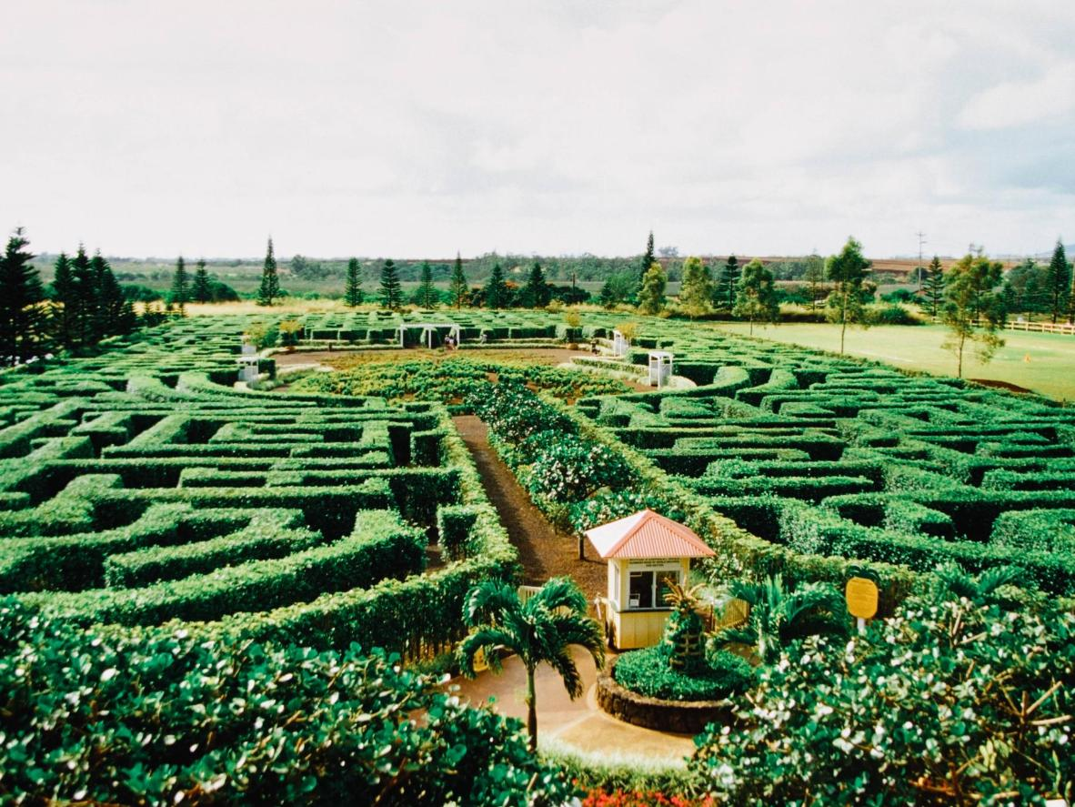 This botanical maze holds two world records for being the world's largest