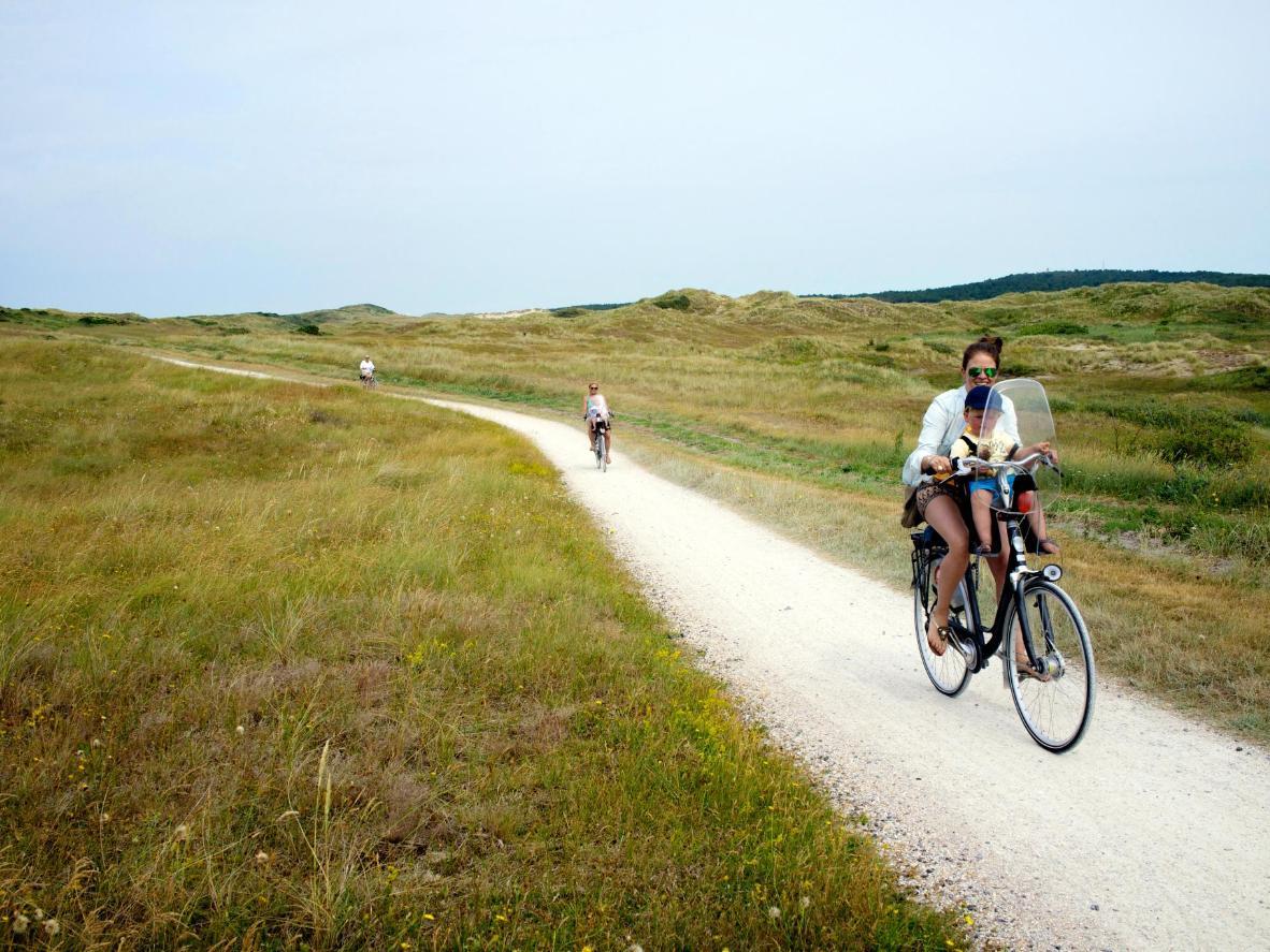 Provozajte se biciklom pored livada s poljskim cvijećem, šuma i vjetrom šibanih dina na otoku Vlieland