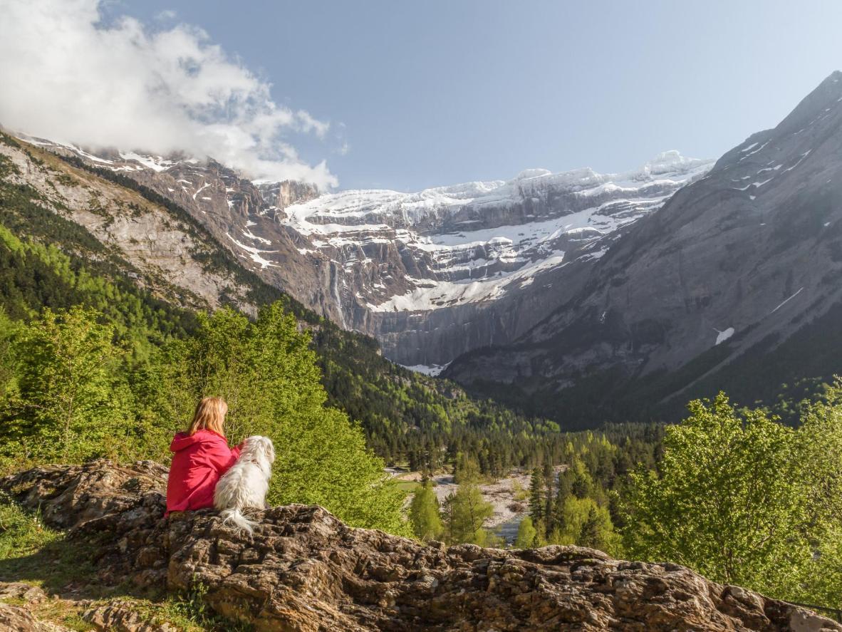 Nyd udsigten til Pyrenæerne med din bedste firbenede ven