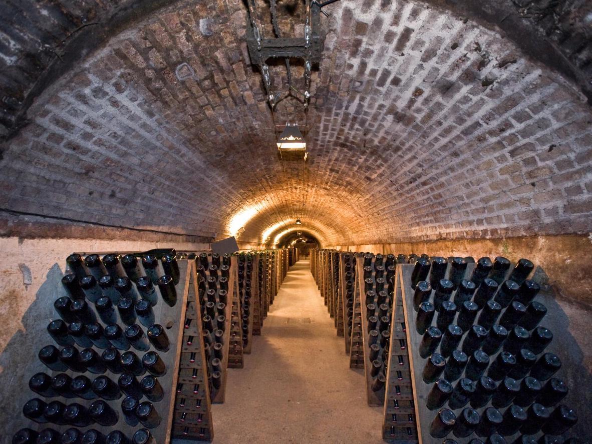 Visitez les caves à champagne d'Épernay de près de 18 km de long à bord d'un petit train