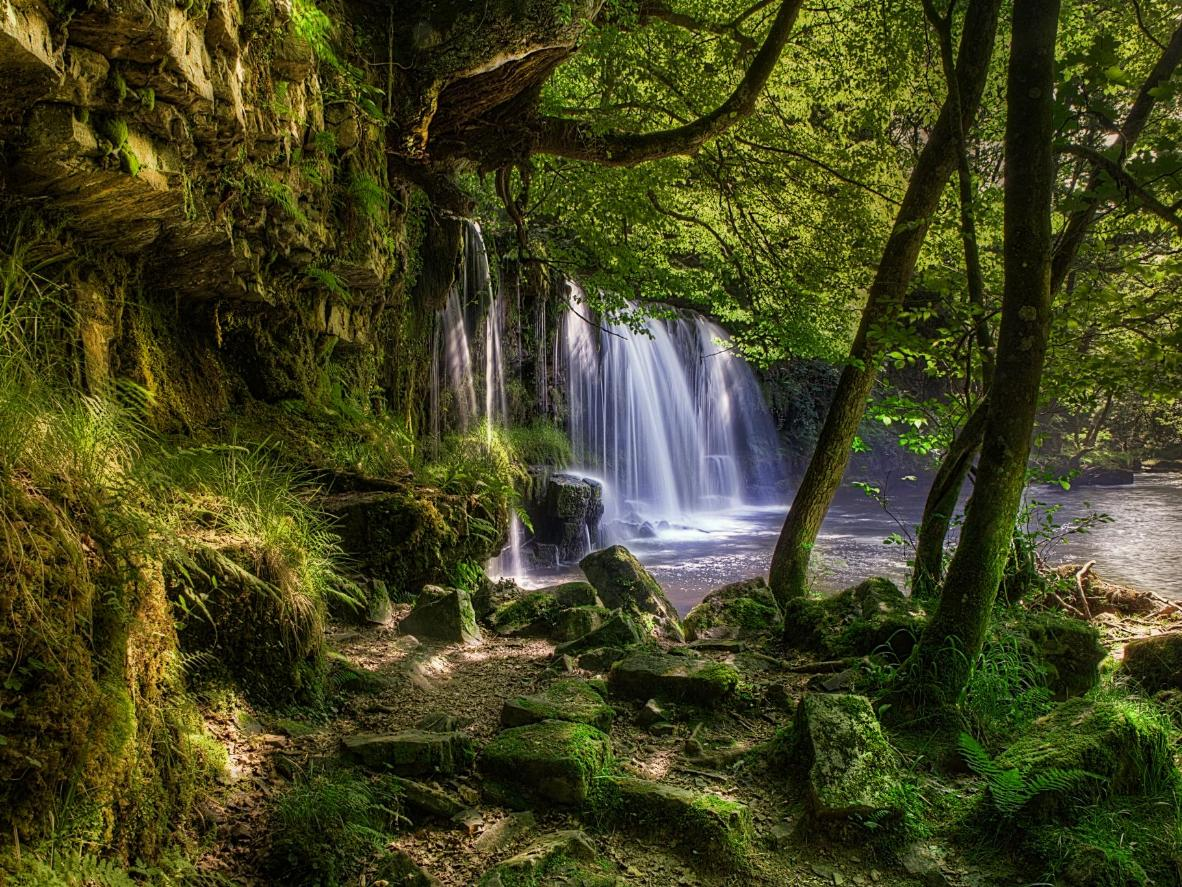 The Lower Ddwili Falls are hidden in the woods of Pontneddfechan