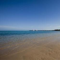 Port Ghalib