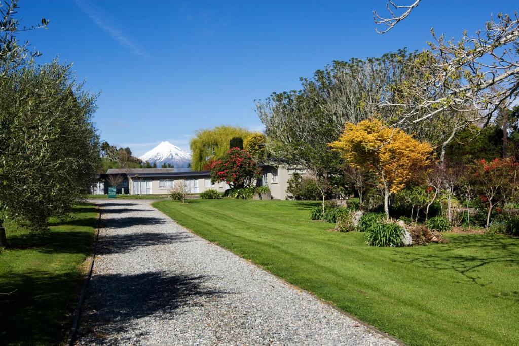 A garden outside Ratanui Villas