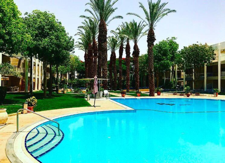 בריכת השחייה שנמצאת ב-דירות רויאל פארק באילת או באזור