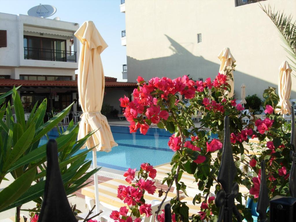 Ein Blick auf den Pool von der Unterkunft Philippos Studios & Apartments oder aus der Nähe