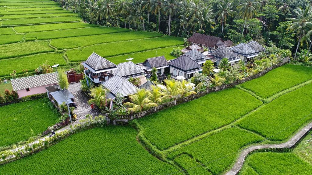 A bird's-eye view of Villa JJ and Spa Ubud