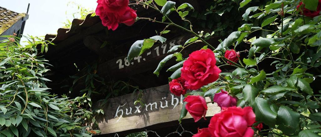 Hotel Restaurant Huxmuhle Osnabruck Prețuri Actualizate 2020