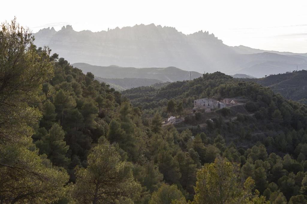Masia CasaJoana Rural, Rellinars (con fotos y opiniones ...