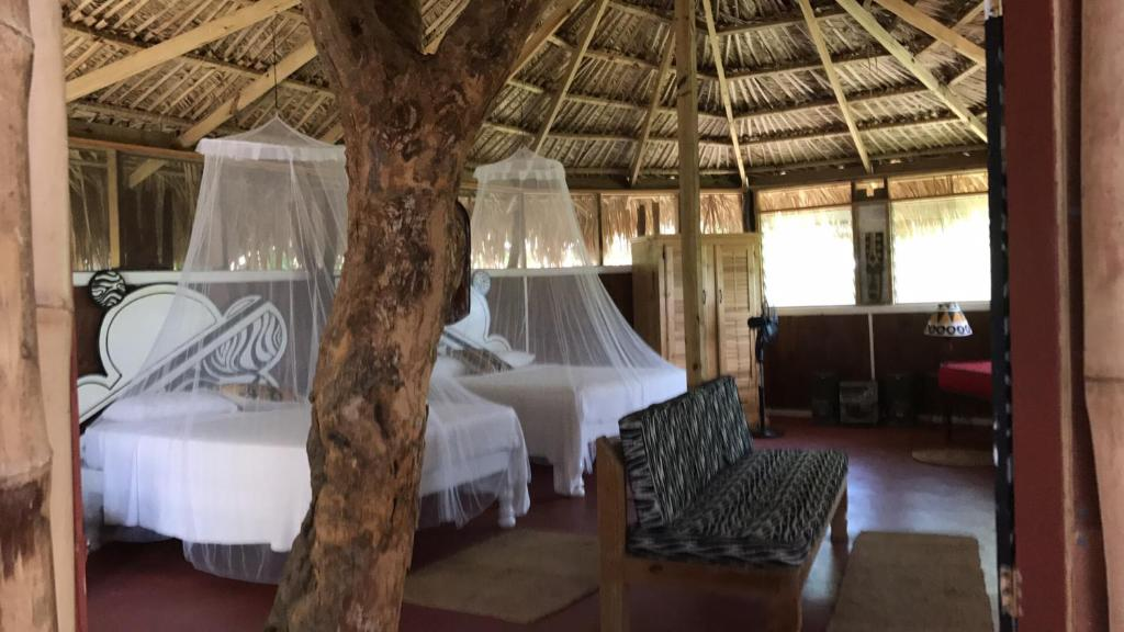 A bed or beds in a room at Moringa Ingadi Village