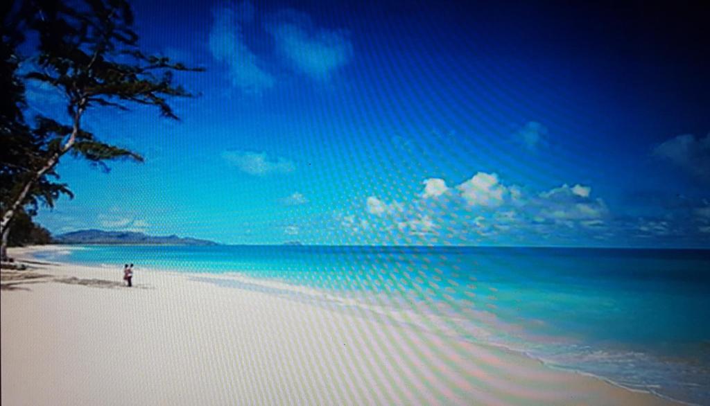 Oceanview Waimo Beach Bungalow Hi Booking