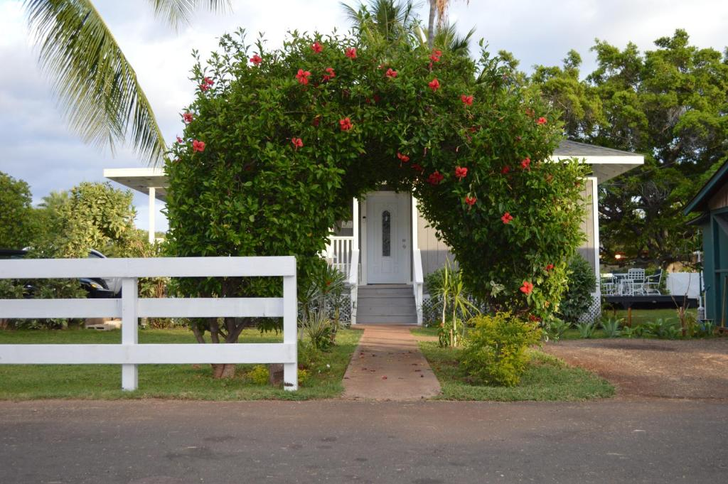 Sensational Hostel The Lahaina Beach House Hi Booking Com Home Remodeling Inspirations Propsscottssportslandcom