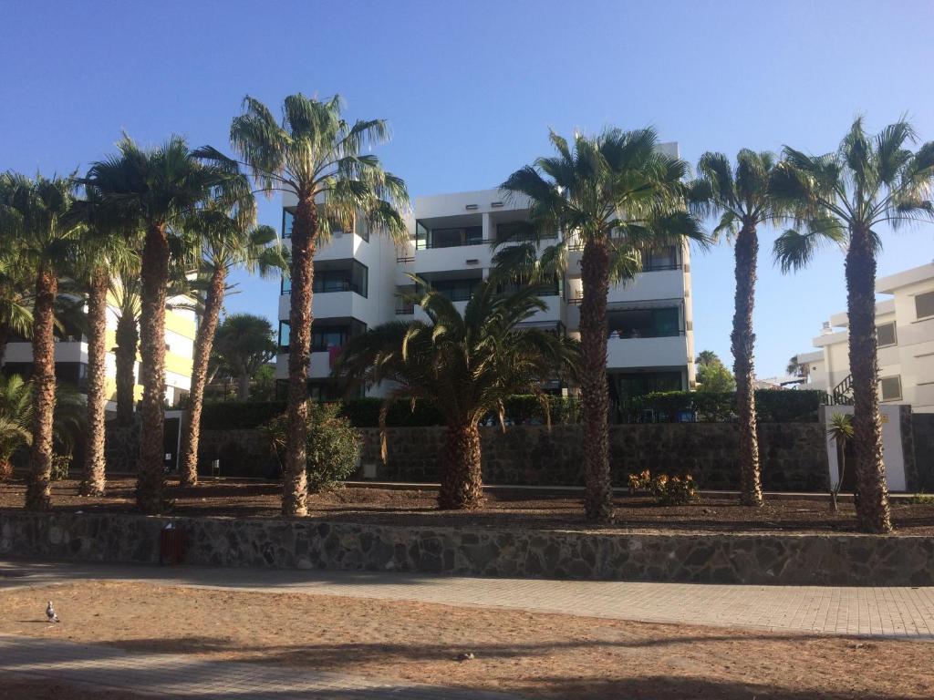 Apartamentos La Siesta San Agustin Paivitetyt Vuoden 2020 Hinnat