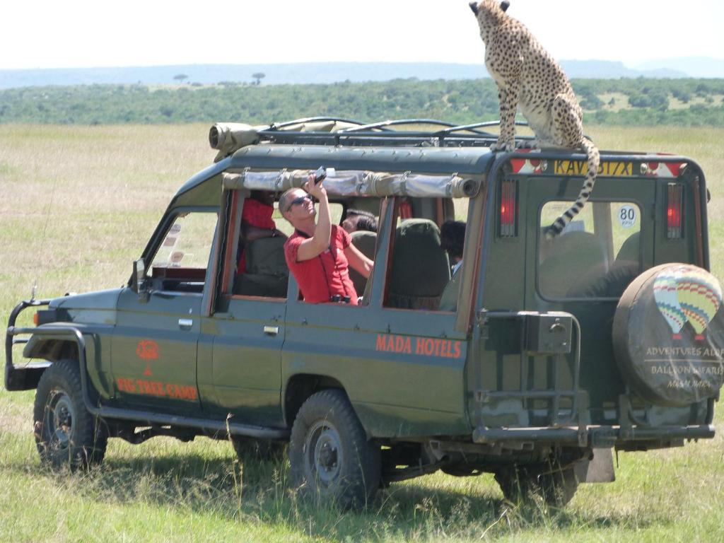 Masai mara game drives