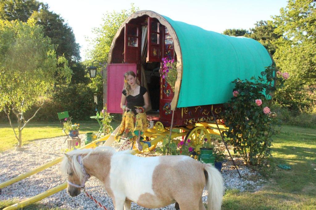 Pet or pets staying with guests at La ferme de bohème