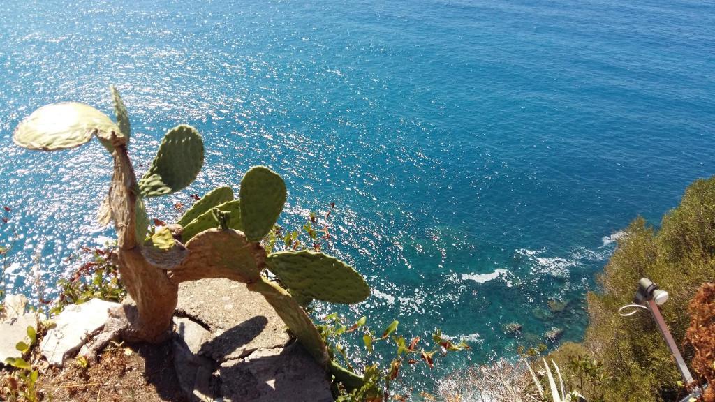 Apartment La Terrazza Sul Blu Corniglia Italy Booking Com