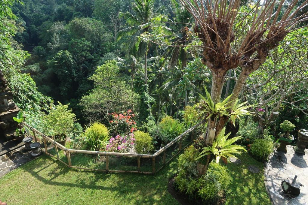 A garden outside Bali Villa Djodji