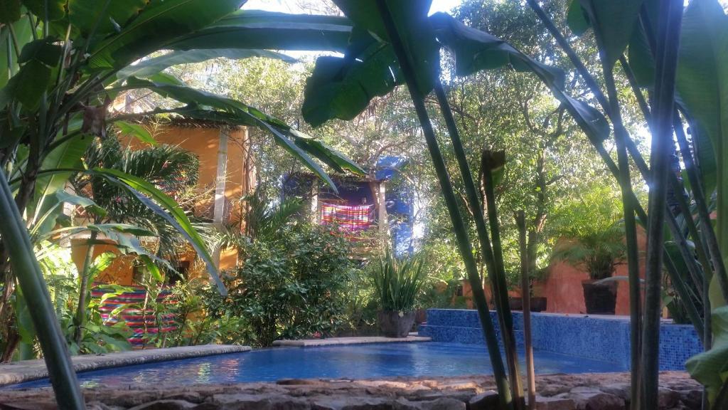 The swimming pool at or near Casa Axis Mundi Raw and Vegan B&B