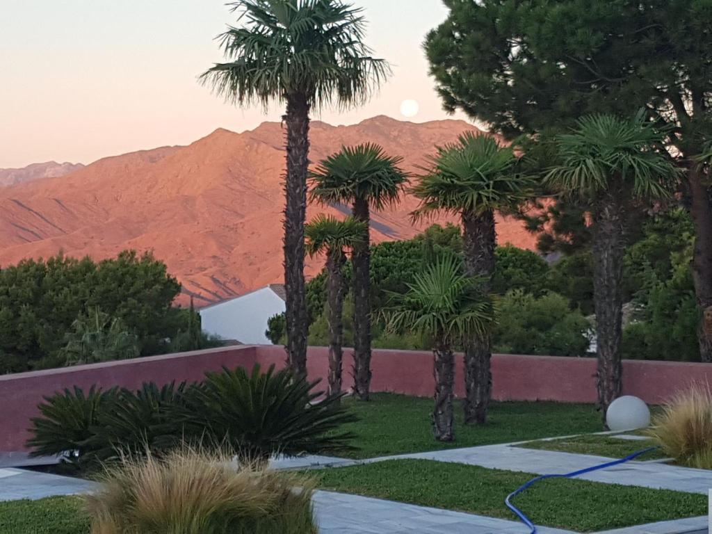 Villa Nibo, Monda – Precios actualizados 2019