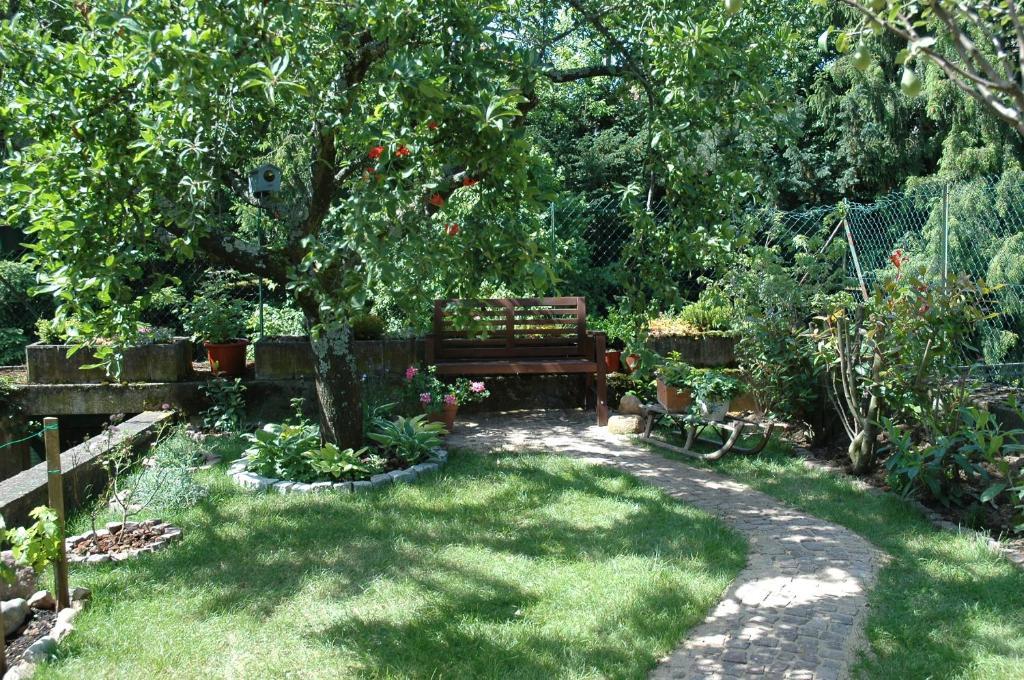 Jardín al aire libre en Mirabelle Bed & Breakfast