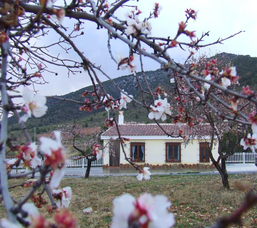 Casa de campo Vivienda Rural Embalse San Clemente (España ...