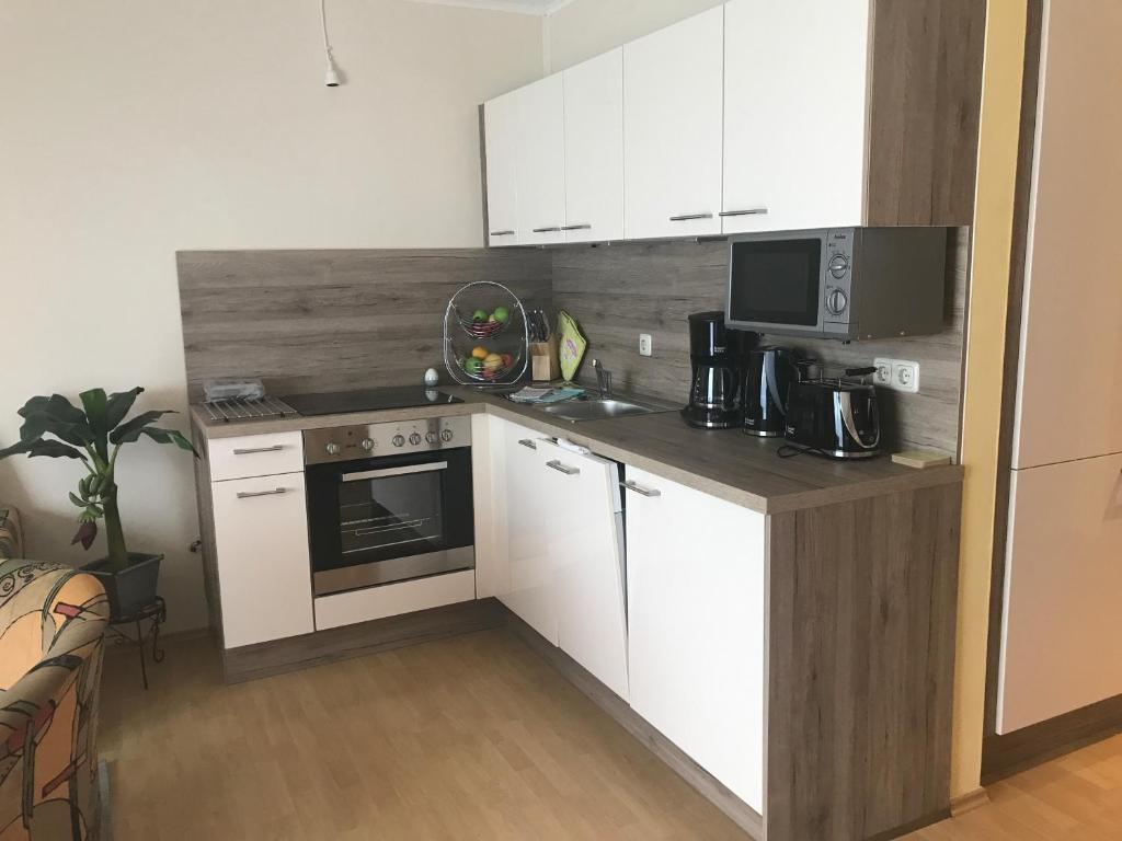 Η κουζίνα ή μικρή κουζίνα στο Ferienresidenz Am weißen Regen