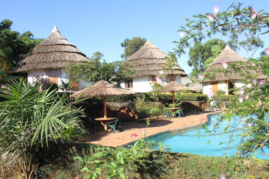 A view of the pool at Banda Lodge or nearby