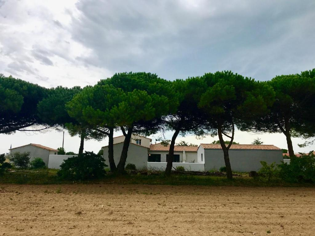 Pin Parasol Distance Maison fleur de pin ars en ré, ars-en-ré – updated 2020 prices