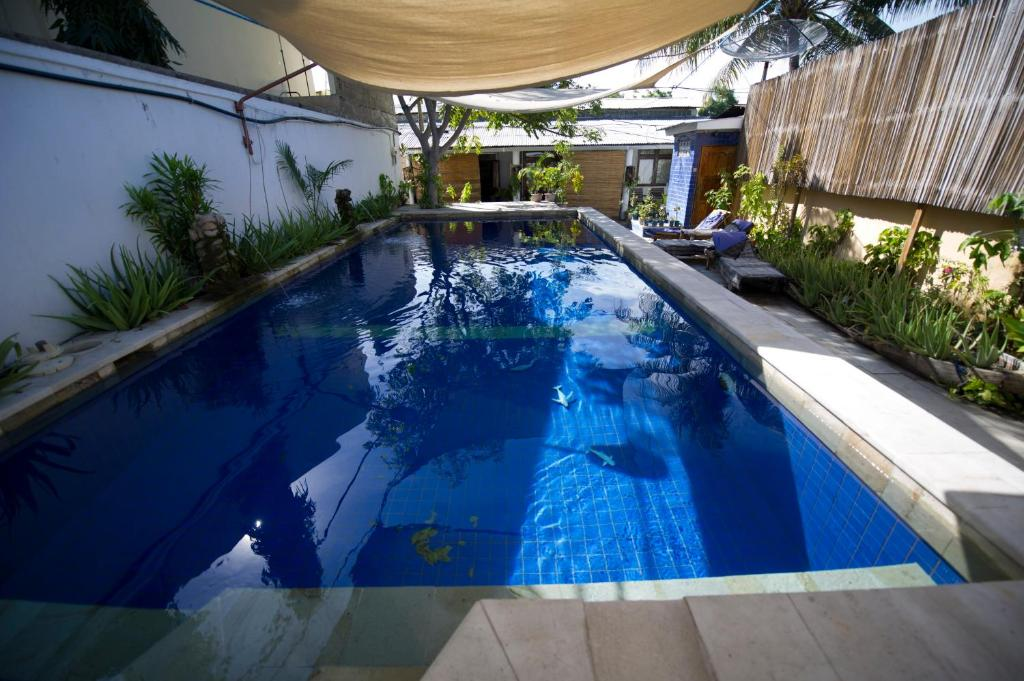 The swimming pool at or near Timor Backpackers