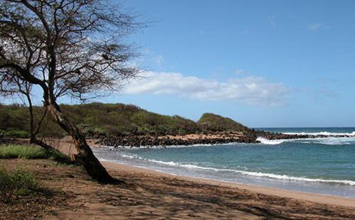 Kalua Koi Villas 1234