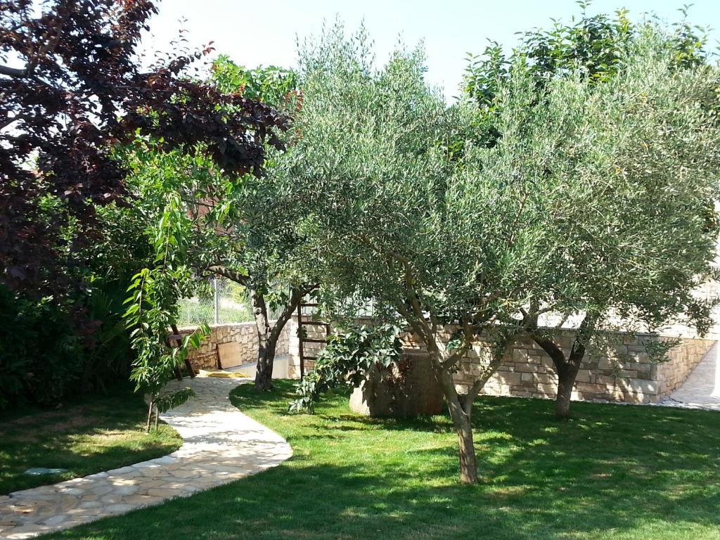 Troppe Mosche In Giardino summer delight apartments, savudrija (salvore) – prezzi