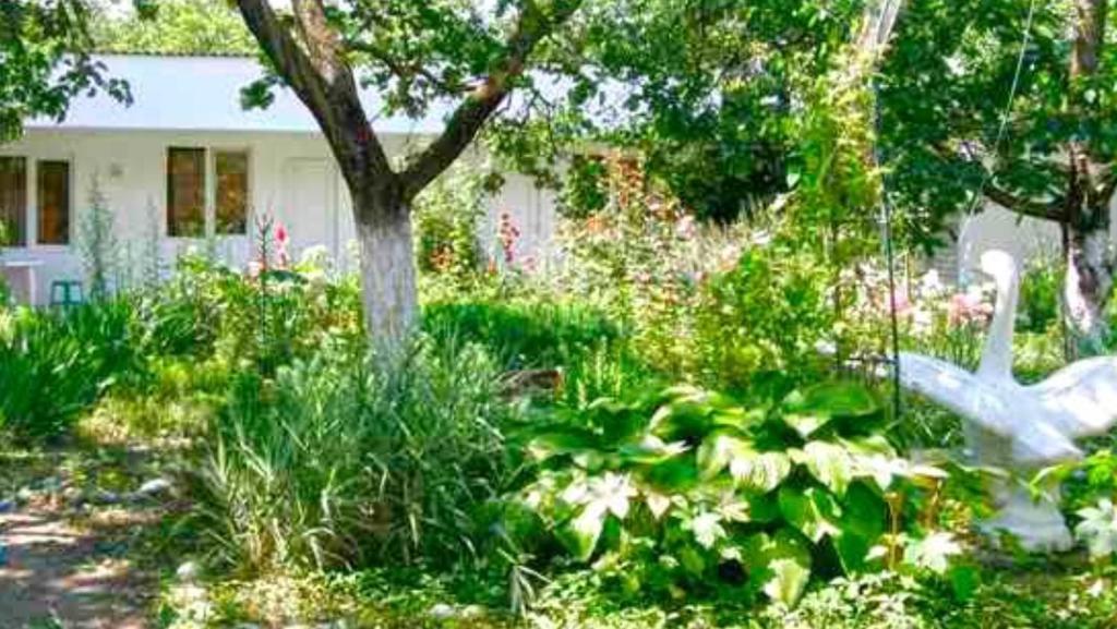 A garden outside Guest House Belaya Lebed