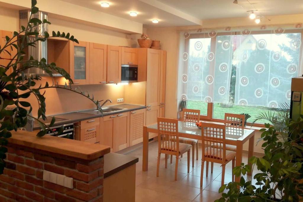 Virtuvė arba virtuvėlė apgyvendinimo įstaigoje Apartamentai Luna