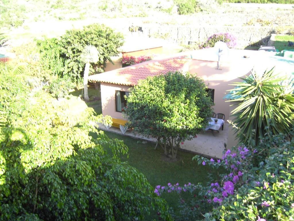 Casa de vacaciones Finca La Gaviota - El Mango (España Icod ...
