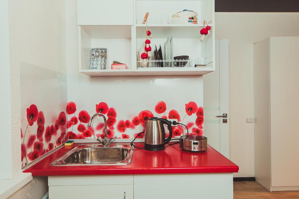 "Кухня или мини-кухня в Mini studiya ""Istrum"""