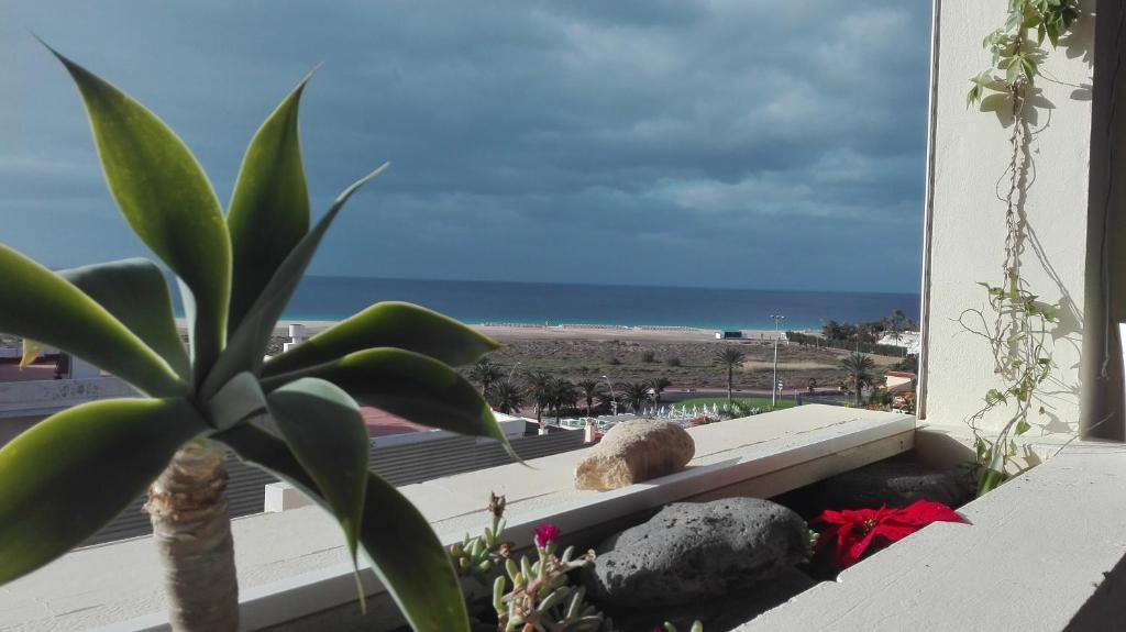 Villa Beach View, Morro del Jable, Spain - Booking.com