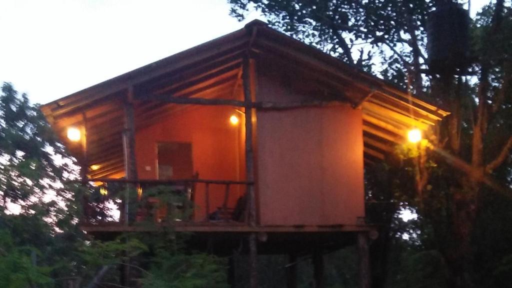 Homestay Akash Treehouse Sigiriya Sri Lanka Booking Com