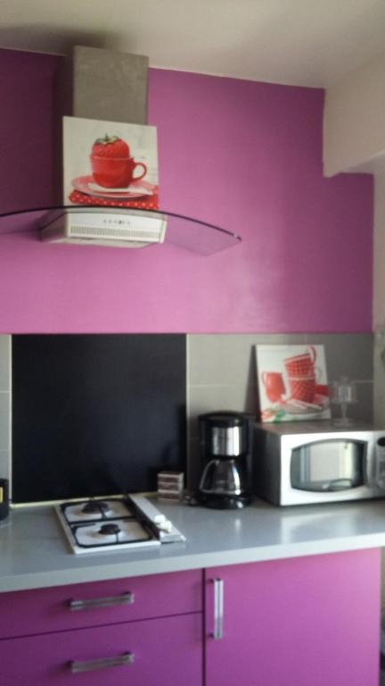 Кухня або міні-кухня у Studio ferber