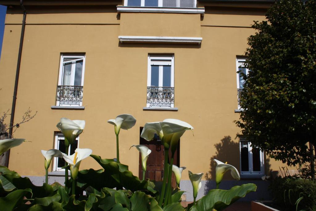 Casa Samuel, Navia (con fotos y opiniones) | Booking.com