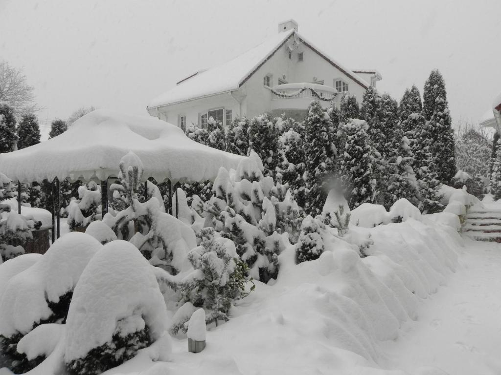 Boutique Hotel Club-Austria during the winter