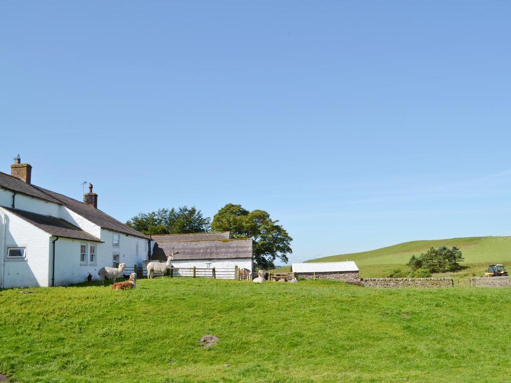 Demesne Farm Cottage