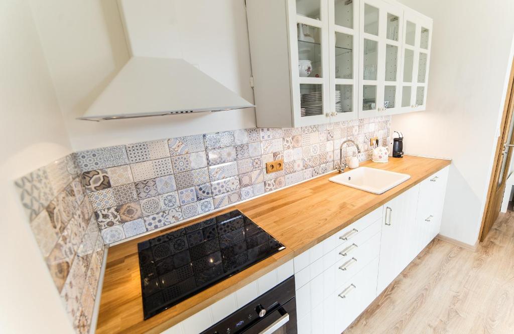 Kuchyň nebo kuchyňský kout v ubytování Apartmán u Knotků