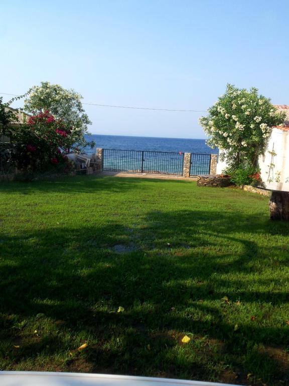A garden outside Adreas' seaside apartment
